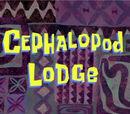 La Logia de los Cefalópodos