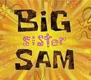 Sam, la hermana mayor