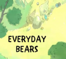 Everyday Bears