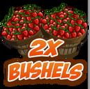 2x Bushel-icon.png