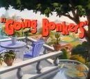Bonkers episodes