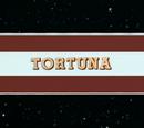 """""""Tortuna"""""""
