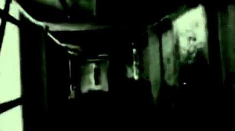 The Grifter - Video