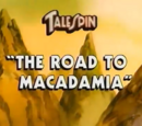 The Road to Macadamia