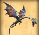 Premium Drachen