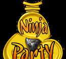 Ninja Party 2014