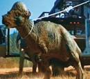 Pachycephalosaurus (Jurassic Park)