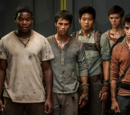 Asnow89/Ask The Scorch Trials Cast YOUR Questions