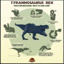 Jurassic park 3d Rexy breakdown.jpg
