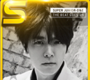 Super Junior-D&E Theme Cards