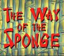 The Way of the Sponge/transcript