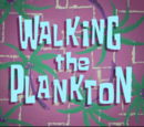 Walking the Plankton (gallery)