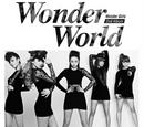 Wonder World
