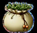 Planta Antidótica