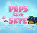 Pups Save Skye's Pages