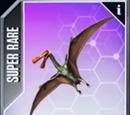 Tropeogopterus