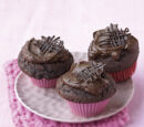 Andrewteel213/Cupcakes are Amazing