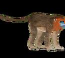Golden Snub-nosed Monkey (Jannick)
