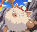 Anthony's Primeape