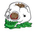 Skummy Skull