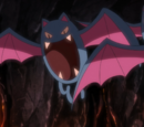 Team Galactic's Golbat (anime)