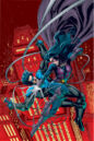 Nightwing Huntress Vol 1 2 Textless.jpg