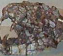 Chiniquodon