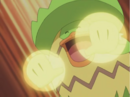 Poncho Ludicolo Protect.png