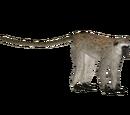 Vervet Monkey (DutchDesigns)