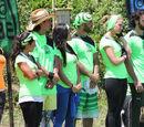 Equipo Tierra 2015