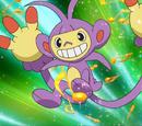Dawn's Pokémon