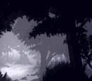 Лес тысячелетнего древа