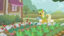 Marigold tending to a garden S1E10.png