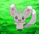 Bianca's Pokémon