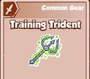 Training Trident