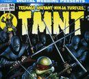 Digital Webbing Presents Teenage Mutant Ninja Turtles