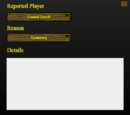 Town of Salem Rules