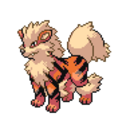 Arcanine sp.png