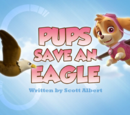 Pups Save an Eagle's Pages