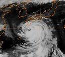 2016 Pacific typhoon season