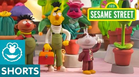 Sesame Street Bert and Ernie Open a Flower Shop (Bert and Ernie's Great Adventures)