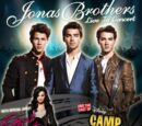 Jonas Brothers Live in Concert World Tour 2010
