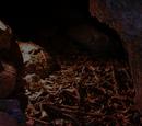 Murubbeh Cave