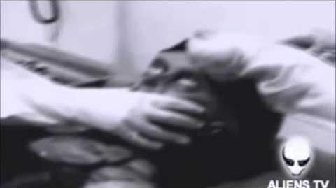 CREEPY DEEP WEB 3 VIDEO COMPILATION (ghost alien..)