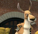 Joey (The Penguins of Madagascar)