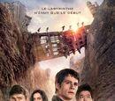 La Terre Brûlée (film)