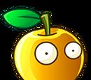 Golden Apple (HfEvra)