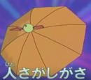 Odd Umbrellas