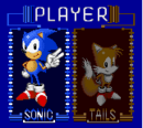 Character-Select-Sonic-Triple-Trouble.png