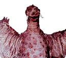 Peguila